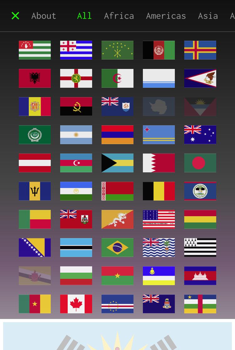 Fake Flag by VERDE